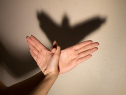 Shadow of the hand and fingers in the form of a bird on the wall