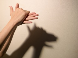 Shadow of the hand and fingers in the form of a dog on the wall
