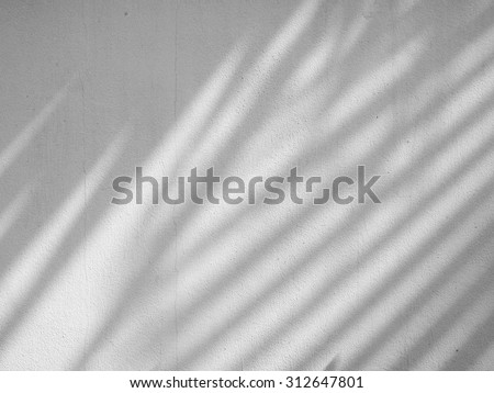 shadow of the leaves on a white wall