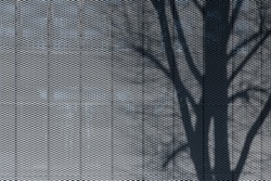 Shadow of tree on perforated metal plate structured facade texture cladding modern architecture