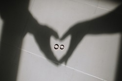 shadows from the hands of the bride and groom that show a heart. In the center of the heart are wedding rings