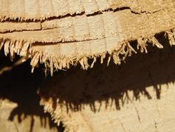 Shadows of splinters on the wood