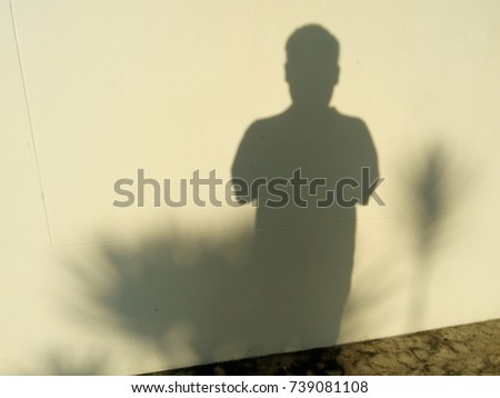 Shadows on the wall - Shutterstock ID 739081108