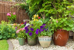 Shady corner of a garden with containers full of colorful flowers