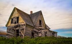 shagging abandon house