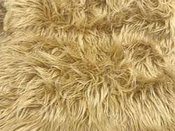 Shaggy faux fur texture in tan rug texture for background