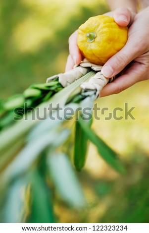 Shaking the Lulav - stock photo