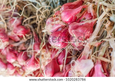 shallots ,red onion  #1020283786
