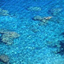 Shallow clear sea of Crete near village Panormo, Crete - Greece