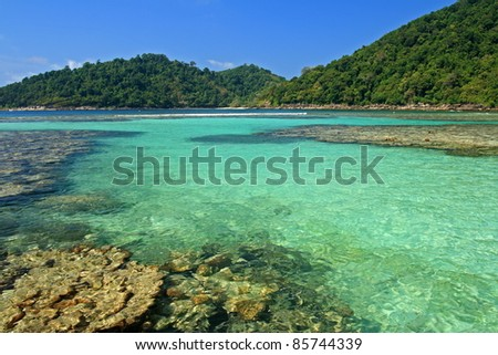 Shallow Coral at Surin island, Thailand - stock photo