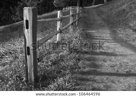 Shallow DOF image of Wood fenced path on the slope of a hill headed into the dark woods in black and white