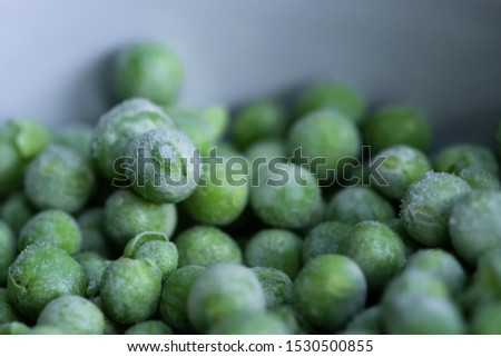 Shallow focus of freshly picked garden peas, having been frozen. Seen close-up, after being removed from a freezer, to maintain there freshness. Some of the pea shells have split open.