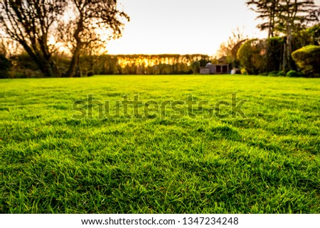 Shallow focus using HDR techniques to show a lush, well maintained lawn seen in  a large garden at sunset. The distance shows the sun going down behind the out of focus distant hedge.