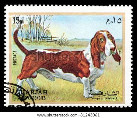 SHARJAH - CIRCA 1972: A stamp printed in Sharjah shows a pedigree dog, circa 1972