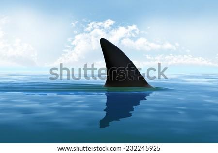 Shark fin above water ストックフォト ©