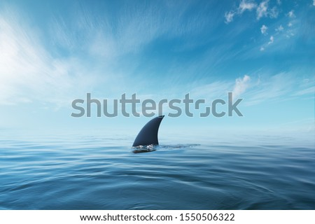 shark fin on surface of ocean agains blue cloudy sky Foto stock ©