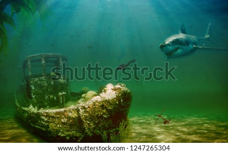 Shark under sea /ocean