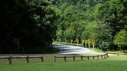 Sharp curve on the road, curve sign on the road on forest background for using background and wallpaper