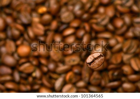 Sharp grain of coffee against not sharp coffee grains