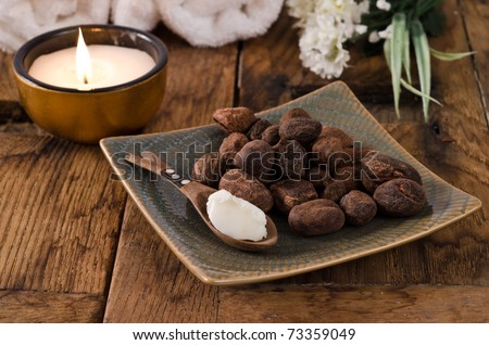 Shea nuts and shea butter on a spoon in a natural mood - stock photo