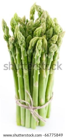 Sheaf of asparagus on a white background. - stock photo