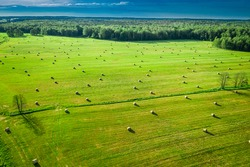 Sheaves of hay on green field. Agriculture in Poland. Aerial view of countryside