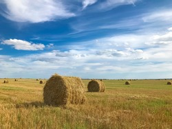 sheaves of hay on the field, yellow-blue photo background