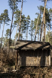 Shed in a woods. Old house in the forest.