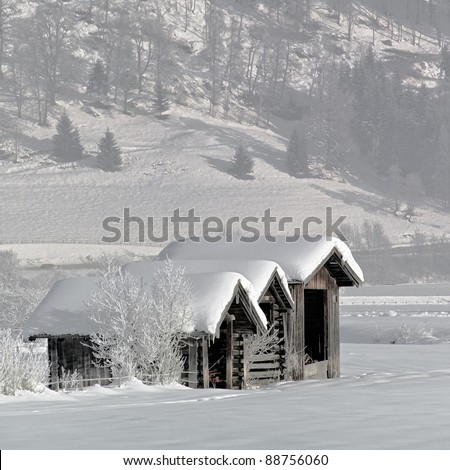 Sheds for hay in the tyrolean valley - Austria