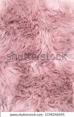 Sheep fur. Pink sheepskin rug background #1198246045