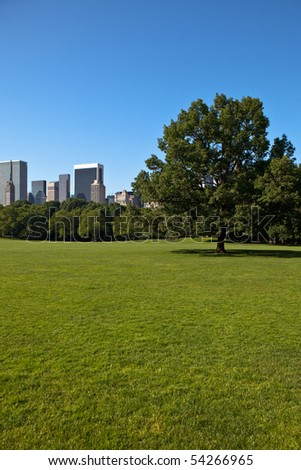 Sheep Meadow, Central Park, New York City - stock photo