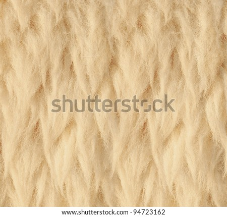 Sheep skin Background