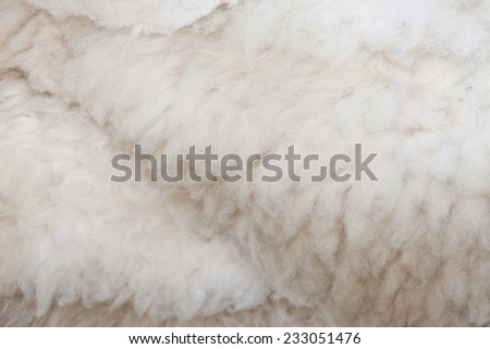 sheep skin texture background, pure natural soft raw wool, softness