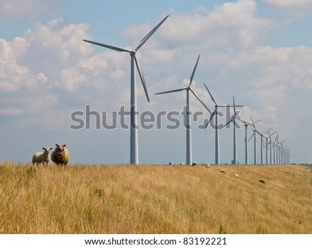 Sheep watching from a dike in front of a row of windturbines