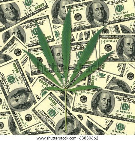 Sheet of a hemp on a background of money