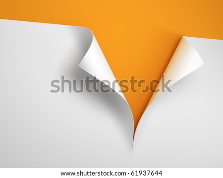Sheet of paper with the curled corner 3d rendering