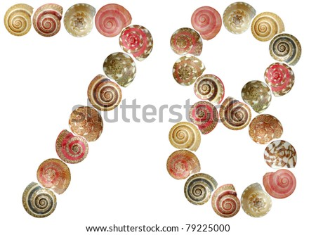 Shell alphabet, white background isolated