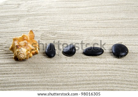 Shell and black stones on sand.