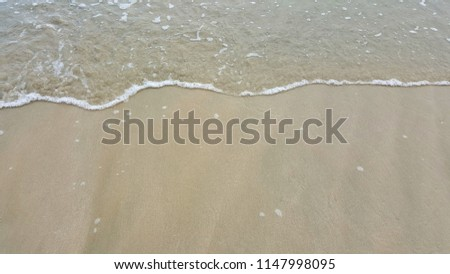 Shell and Sand with soft wave of  Beach.  #1147998095