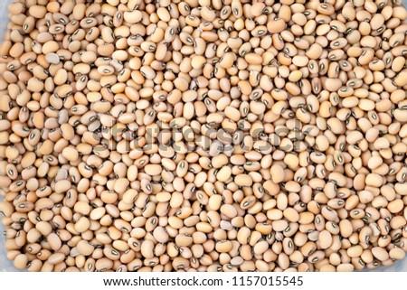 Shell of beans
