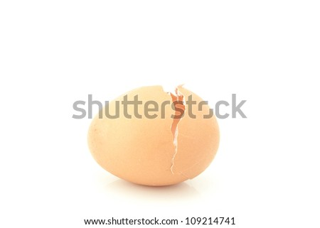 Shell of the egg. Isolated on white background. Soft focus.