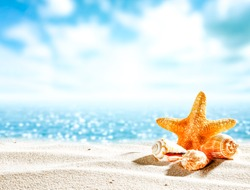 Shell on sand and free space for your decoration. Blue ocean blurred background.