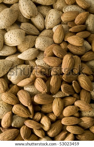 Shelled and  un-shelled almonds filling the frame