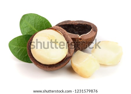 Shelled macadamia nuts with leaves isolated on white background
