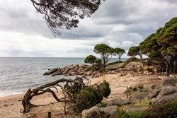 Shelley Cove near Bunker Bay, Eagle Bay and Dunsborough city in Western Australia with nice sandy beach and trees in overcast weather