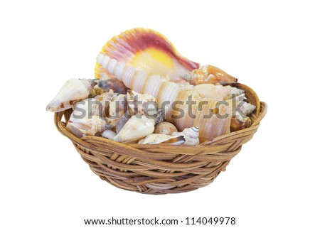Shells, folded pile of straw in a basket