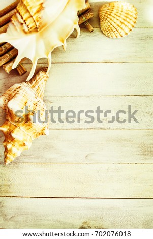 Shells on an old wooden background #702076018