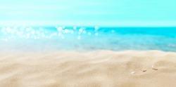 Shells on sandy beach.