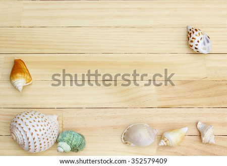 Shells on the wooden floor #352579409