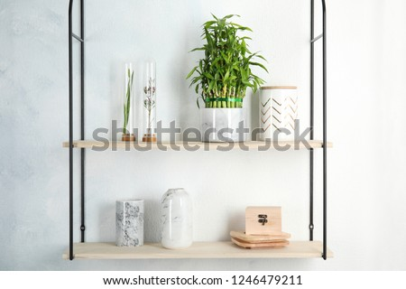 Shelves with green lucky bamboo in pot and decor on light wall